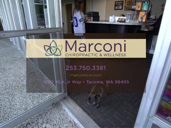 Marconi Chiropractic & Wellness